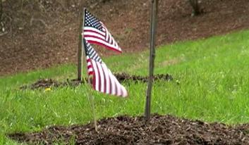 The Virginia Nursery and Landscape Association is panting trees to honor each of the 600,000+ soldiers killed or missing in action during the Civil War.