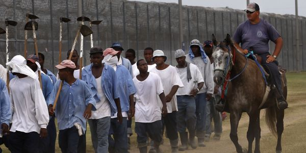 Prisoners and guard at Louisiana State Penitentiary, in Angola, La.
