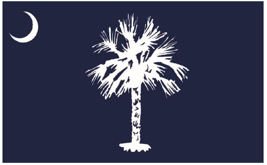 Historians Picked A New Design For the State Flag Of South Carolina. Everyone Hates It.